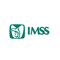 imss-cliente-diseñadora-freelance