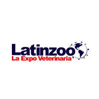 latinzoo-diseñadora-freelance